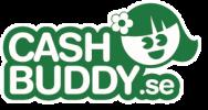 Vanligaste orsakerna till avslag Cash Buddy lån