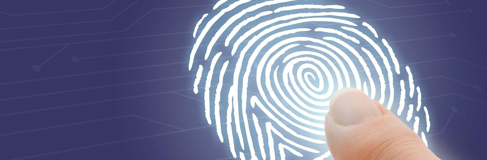 Bisnode Kredit tar kreditupplysning Nanoflex smslån